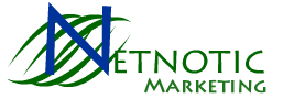Netnotic Marketing Inc company
