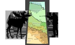 saskatchewan-moose-hunting