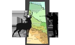 saskatchewan-deer-hunting